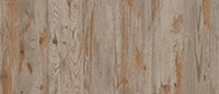 6231 Beige Weathered Spruce