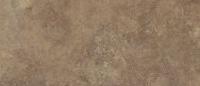 Cambrian Stone
