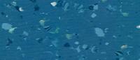 Ocean Ripple